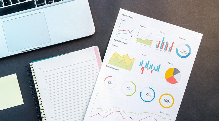 online Umfragebogen mit statistischen Auswertungen