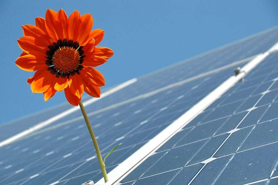 Solaranlage für Strom auf Festivals
