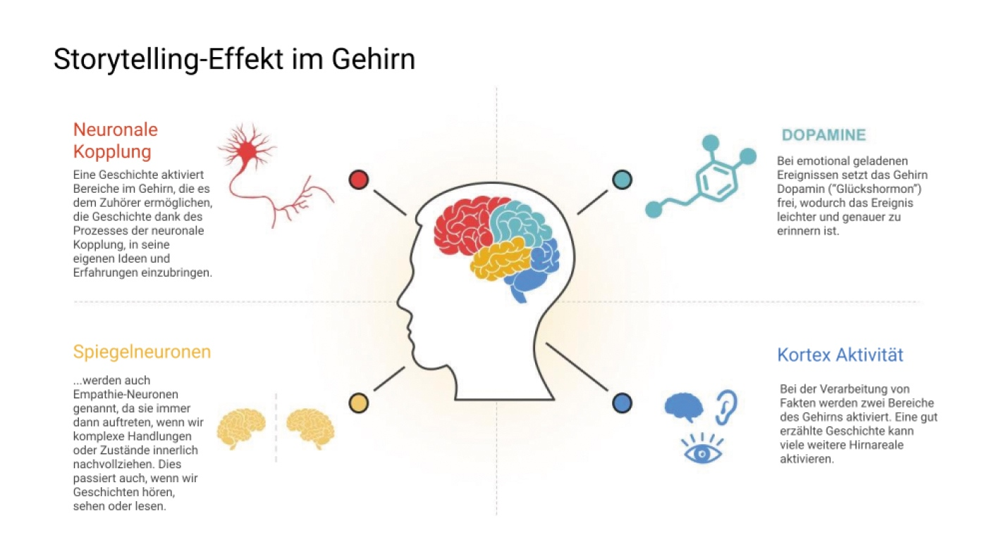 Storytelling-Effekt im Gehirn